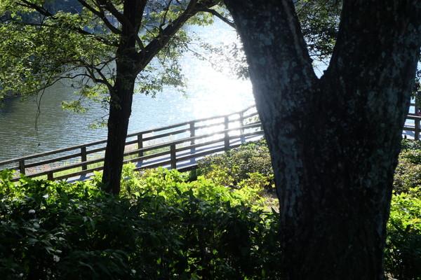 blog fukugyo kaisetsu (5)
