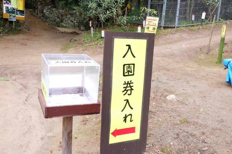 ookuboji yasobaan shakunage (17)