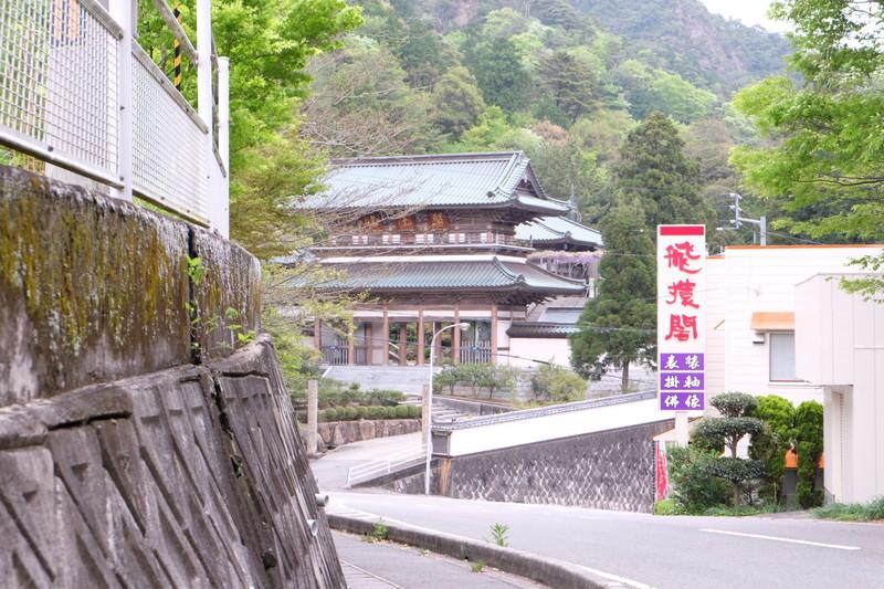 ookuboji yasobaan shakunage (2)