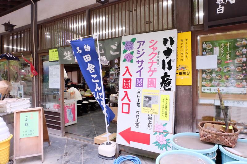 ookuboji yasobaan shakunage (3)