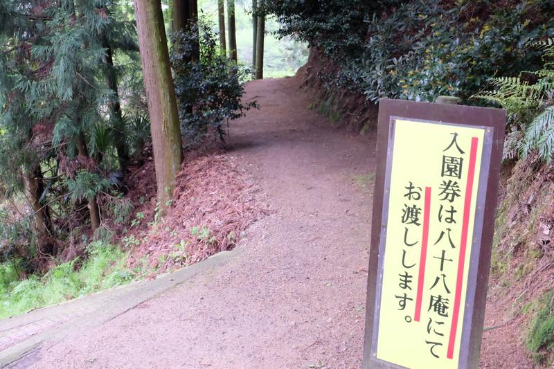 ookuboji yasobaan shakunage (8)