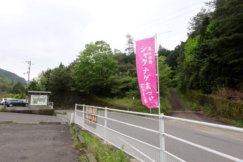ookuboji yasobaan shakunage
