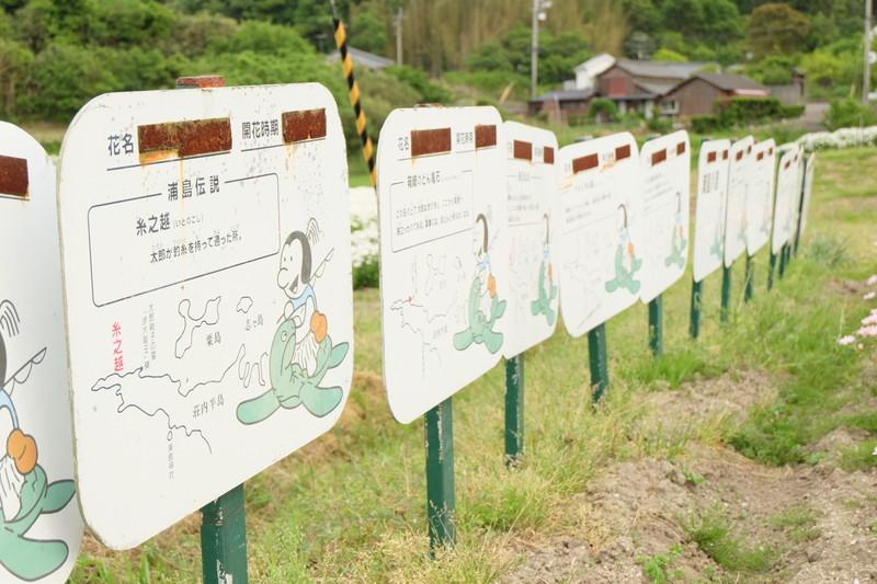 flowerpark-urashima (37)