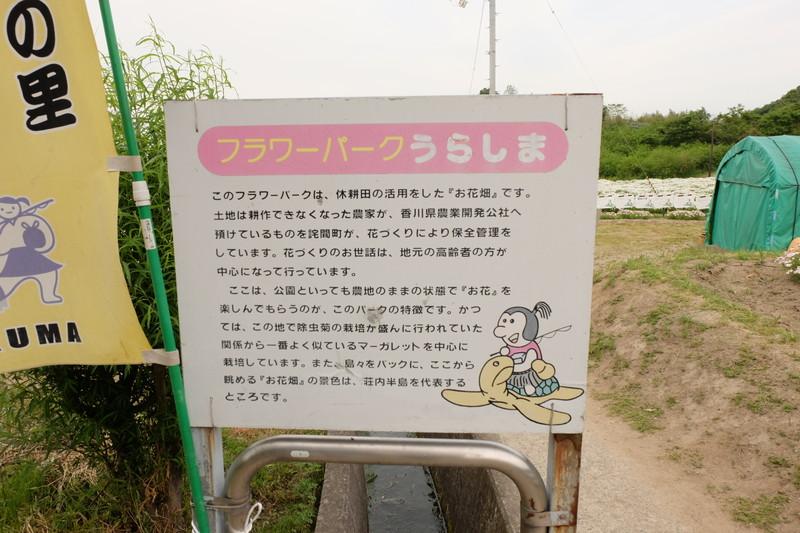 flowerpark-urashima (40)