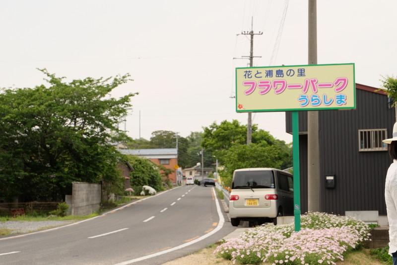 flowerpark-urashima (41)
