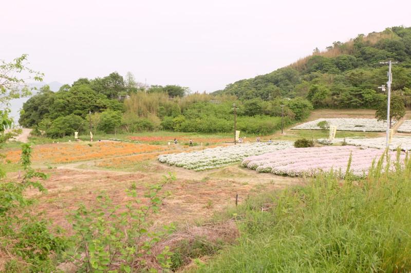 flowerpark-urashima