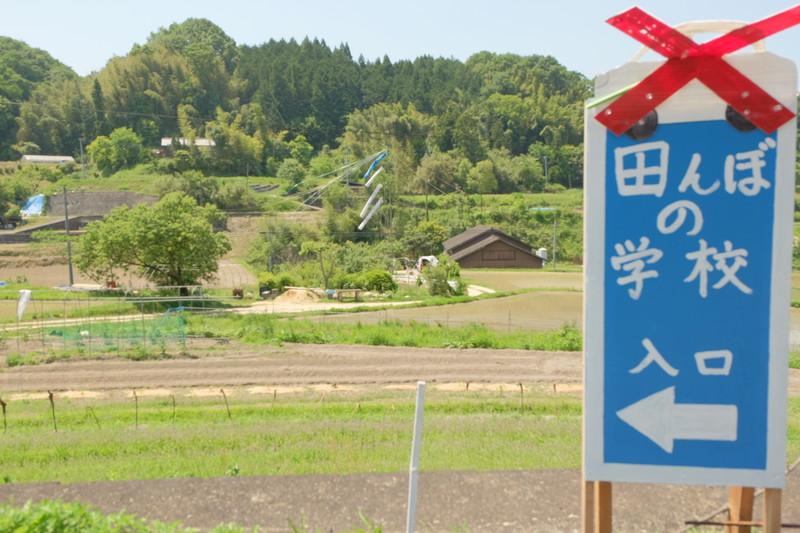 kagawa-yamanamigeijutsusai2016-ayagawa (35)