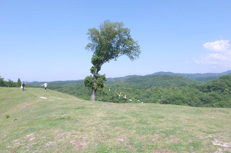 kagawa-yamanamigeijutsusai2016-ayagawa (65)