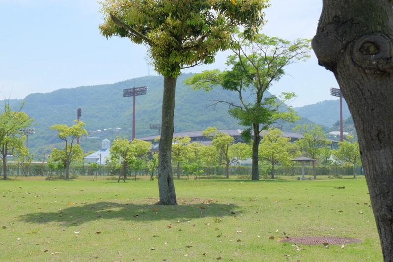 koukouyakyuu-ouenka-j-pop (1)