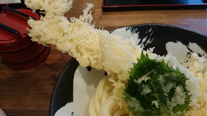 honkakuteuchiudon-mori (13)