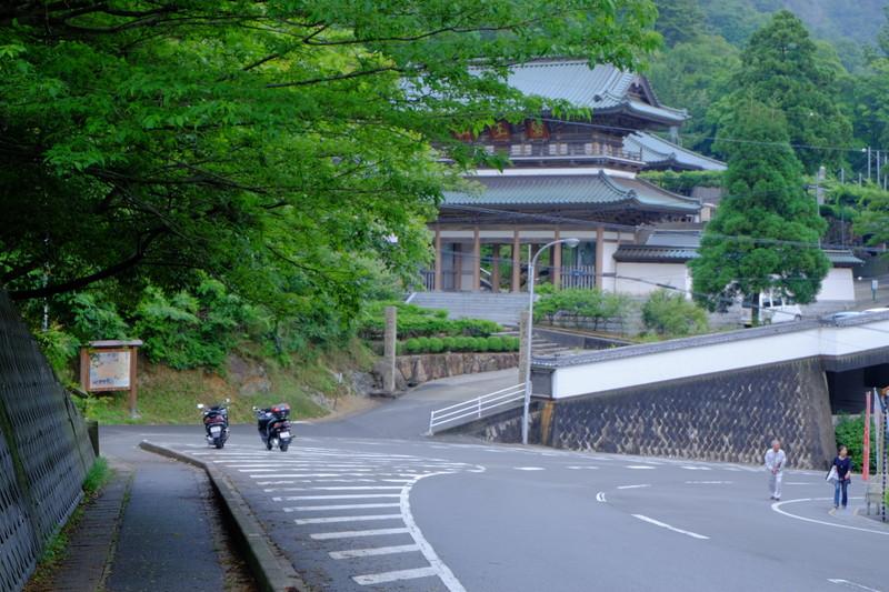 ookuboji-ajisai (1)