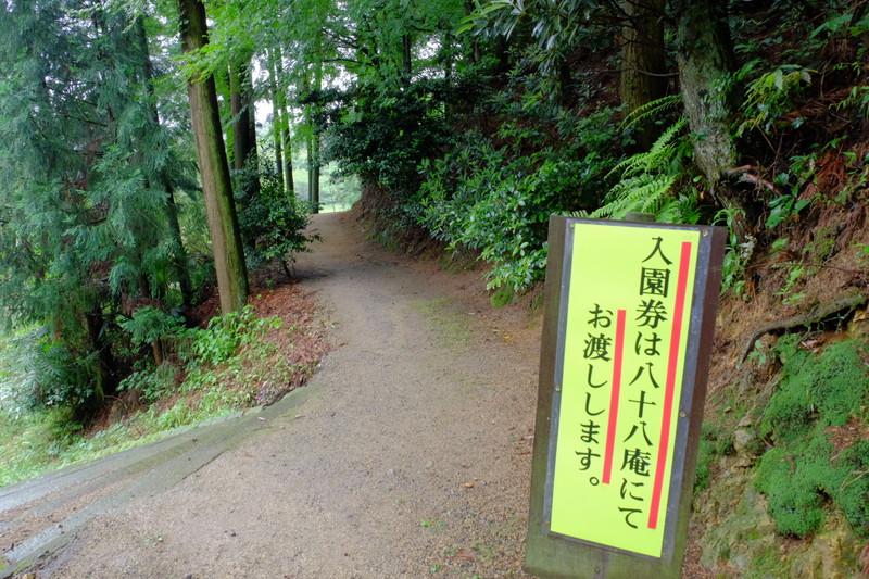 ookuboji-ajisai (3)