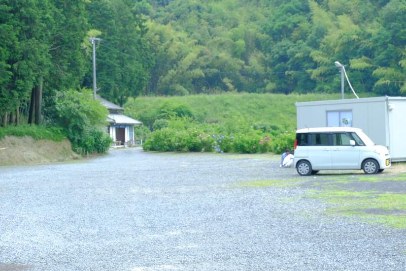 shoumyouji-ajisai (37)