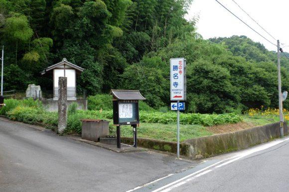 shoumyouji-ajisai (7)
