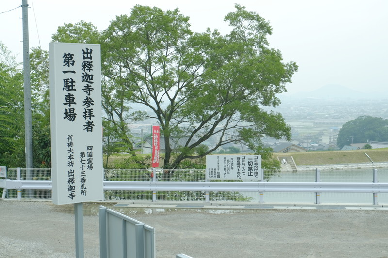 shusshakaji-ajisai (4)