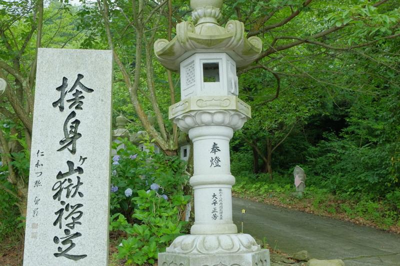 shusshakaji-ajisai (7)