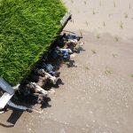 【田植えの時期はいつ?手順や仕方は?】田植え機での植え方のコツや手植えのやり方を紹介