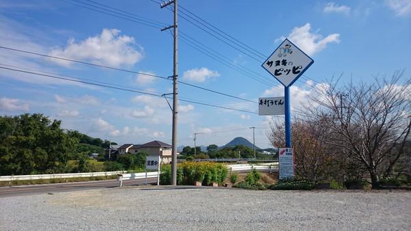 sanuki-no-pippi-1
