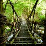 【アクセス方法も紹介!徳島県・奥祖谷二重かずら橋を観光】男橋・女橋の2つのかずら橋の他に野猿もある!