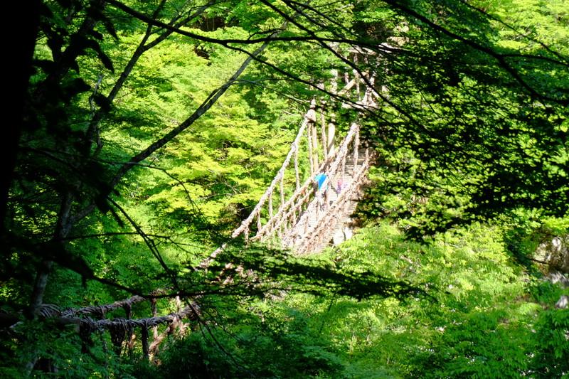 祖谷 の かずら 橋 アクセス